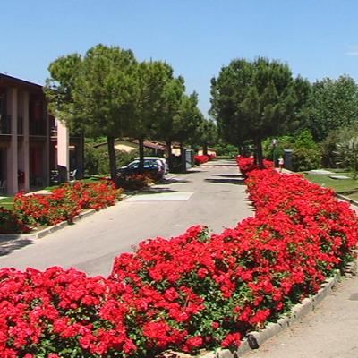 Garda Village In Fiore1 G
